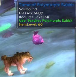 tome-of-polymorph-rabbit