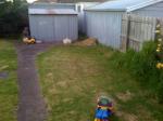 backyard01
